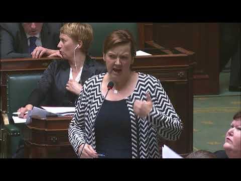 Video Plenaire tussenkomst: de strijd tegen genitale verminking wordt drastisch opgevoerd met mijn wetsvoorstel