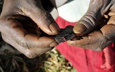 Aanpak genitale verminking blijft op de internationale dag tegen genitale verminking hoog op de agenda