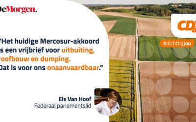 Mercosur-verdrag heeft tanden nodig (opinie DM)